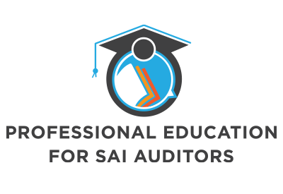 Professional Education for SAI Auditors