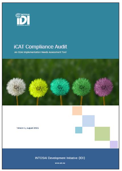 Compliance Audit iCAT V1