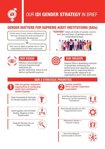 IDI Gender Strategy Infographic