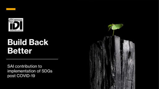 IDI Presentation SDG Audit  Build Back Better