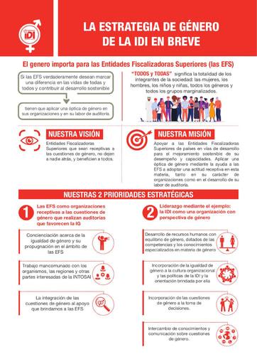 IDI Gender Strategy Infographic -Spanish