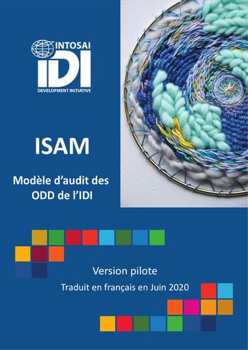 Modèle d'audit des ODD de l'IDI (ISAM)