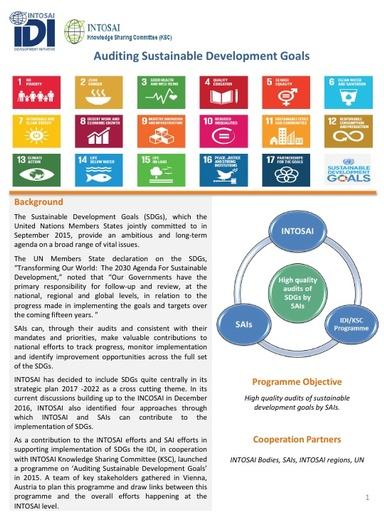 Auditing SDGs brochure