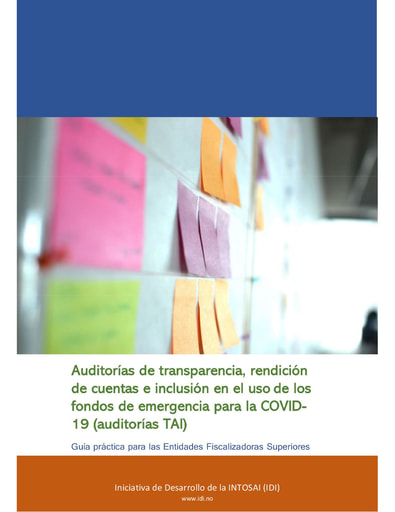 TAI Audit  practical guide FINAL Spanish